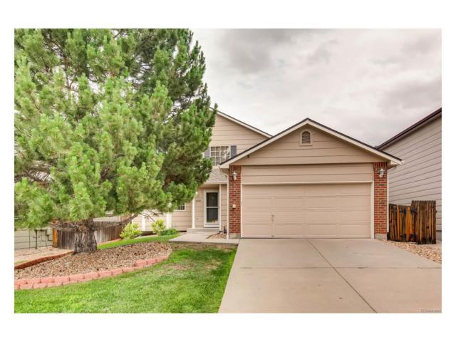 11024 Callaway Road, Parker, CO 80138 (MLS #9906713) :: 8z Real Estate