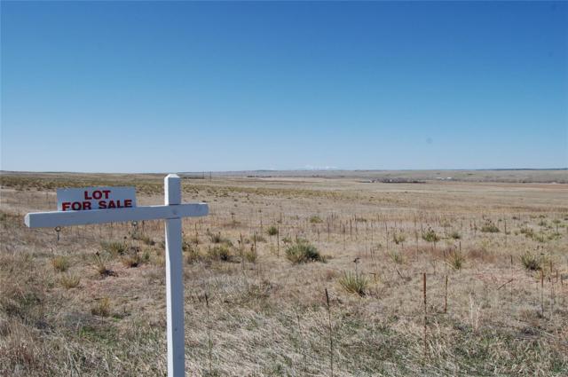 38650 Olson Drive, Kiowa, CO 80117 (MLS #9906945) :: 8z Real Estate