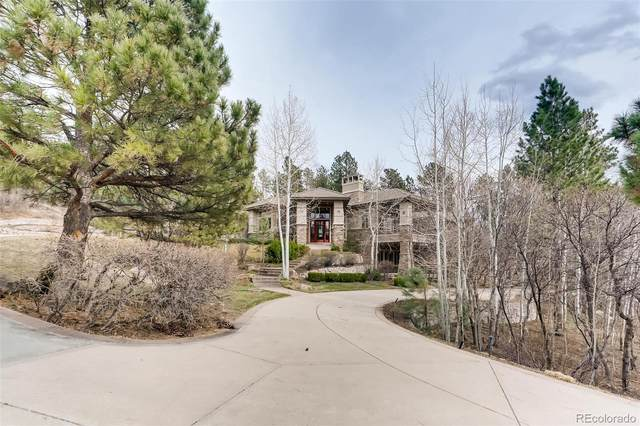 790 International Isle Drive, Castle Rock, CO 80108 (#9907153) :: The Griffith Home Team