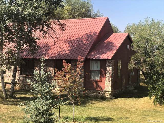 43485 County Road 44, Steamboat Springs, CO 80487 (#9907157) :: The DeGrood Team