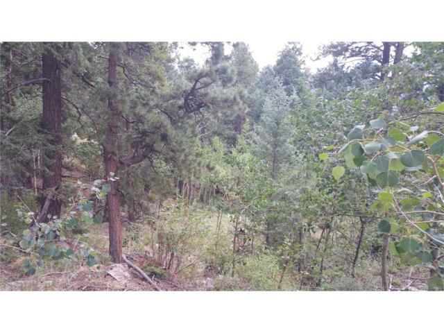 11708 Nichols Way, Conifer, CO 80433 (MLS #9908129) :: 8z Real Estate