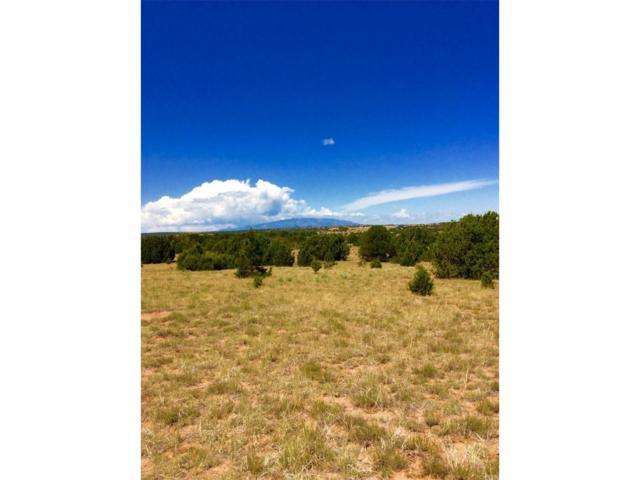 Lot 21 River Ridge Ranch, Walsenburg, CO 81089 (MLS #9908823) :: 8z Real Estate