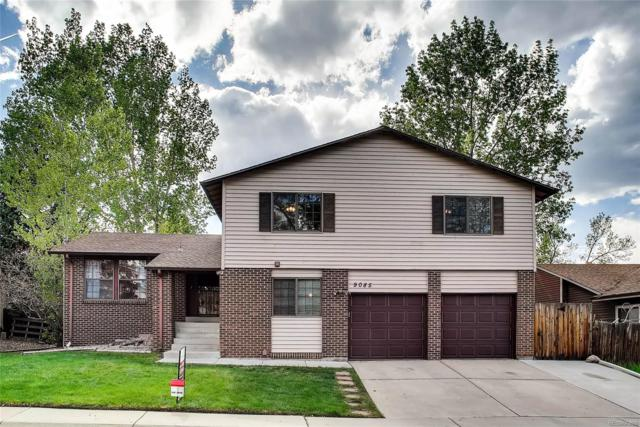 9085 Holland Street, Westminster, CO 80021 (#9913360) :: The DeGrood Team