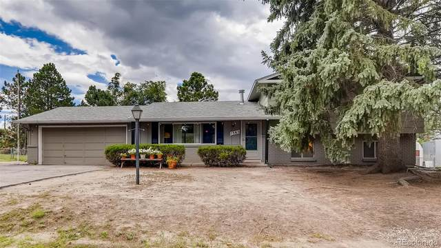 1363 Ginny Lane, Colorado Springs, CO 80918 (MLS #9917902) :: 8z Real Estate