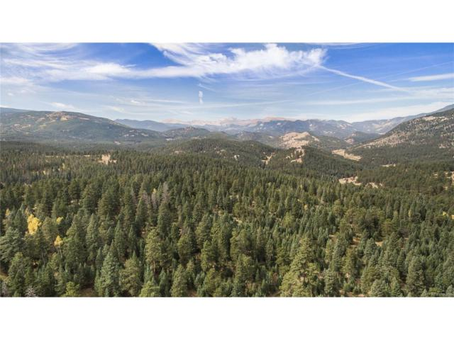 Potato Patch Road, Evergreen, CO 80439 (MLS #9918092) :: 8z Real Estate
