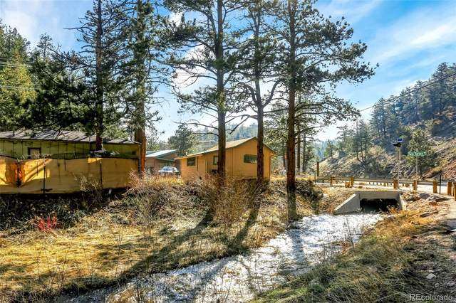 11262 Twin Spruce Road, Golden, CO 80403 (#9919149) :: My Home Team
