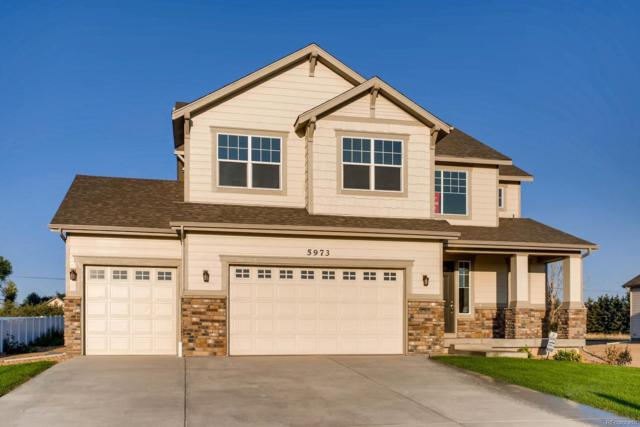 5973 Chantry Drive, Windsor, CO 80550 (#9920042) :: The Heyl Group at Keller Williams