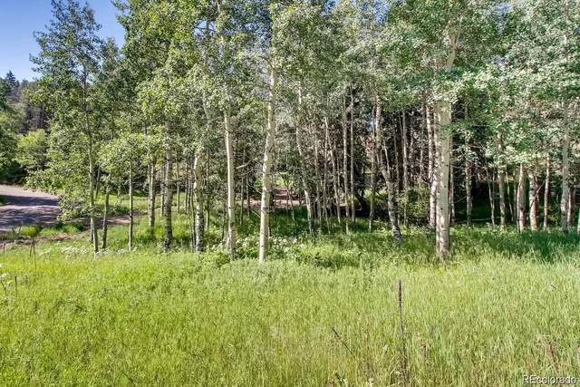 6753 Snowshoe Trail, Evergreen, CO 80439 (#9924247) :: iHomes Colorado