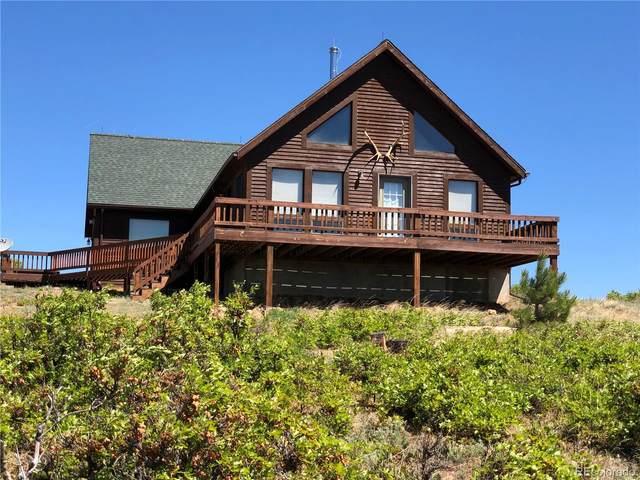 230 Tahmoush Lane, Fort Garland, CO 81133 (MLS #9926717) :: 8z Real Estate