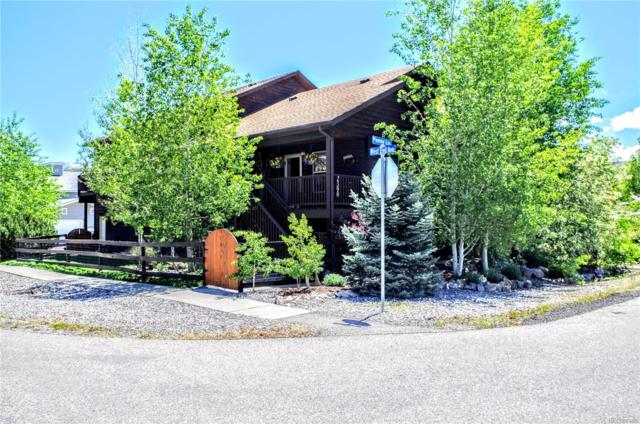 2390 Penny Lane, Steamboat Springs, CO 80487 (#9927272) :: Bicker Realty