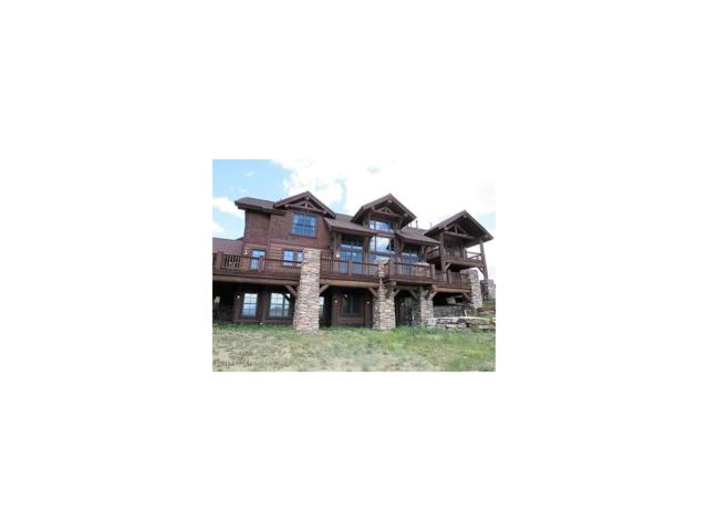 3900 Dexter Drive, Granby, CO 80446 (MLS #9931758) :: 8z Real Estate