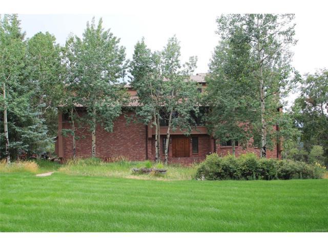 24202 Pleasant Park Road, Conifer, CO 80433 (MLS #9936073) :: 8z Real Estate