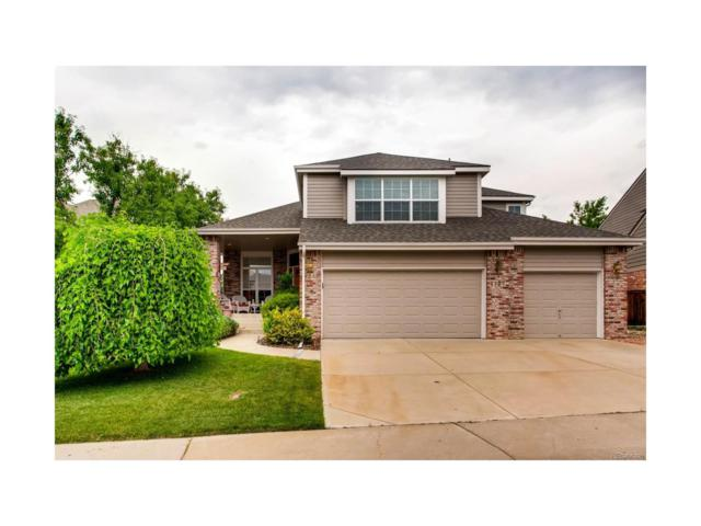 1127 Southbury Place, Highlands Ranch, CO 80129 (MLS #9937326) :: 8z Real Estate