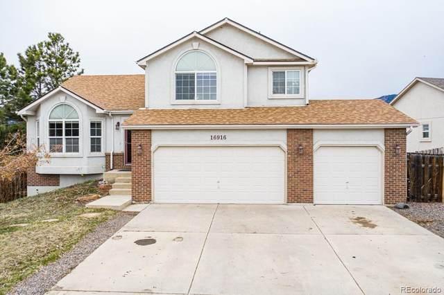16916 Park Trail Drive, Monument, CO 80132 (MLS #9939318) :: 8z Real Estate