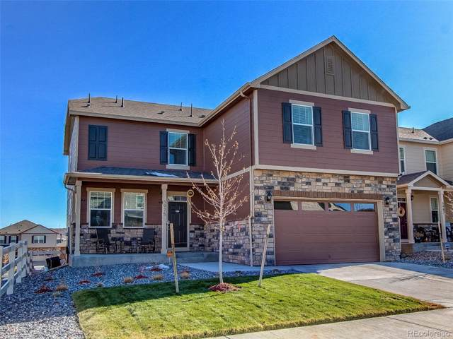 5975 Sun Mesa Circle, Castle Rock, CO 80104 (#9941950) :: Wisdom Real Estate