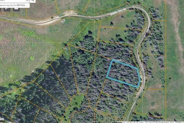 01 Whiffle Tree Trail, Oak Creek, CO 80467 (#9943246) :: The Margolis Team