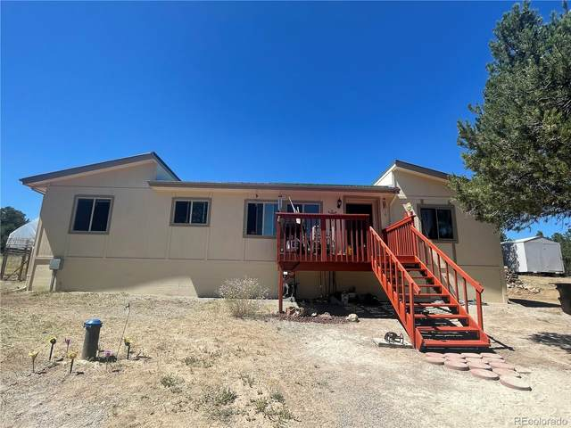 303 West View Road, Cotopaxi, CO 81223 (#9943648) :: Compass Colorado Realty