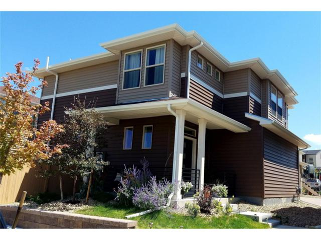 4462 Elegant Street, Castle Rock, CO 80109 (MLS #9944558) :: 8z Real Estate