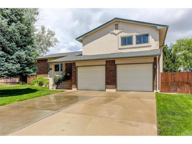 7650 Deer Trail, Colorado Springs, CO 80911 (MLS #9944777) :: 8z Real Estate