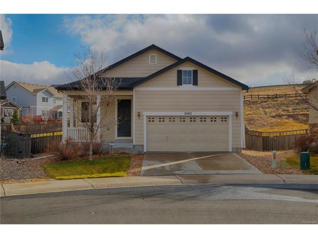 2960 Open Sky Way, Castle Rock, CO 80109 (#9945878) :: The Peak Properties Group