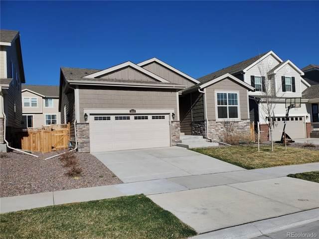 8869 Sassafras Street, Parker, CO 80134 (MLS #9947471) :: 8z Real Estate