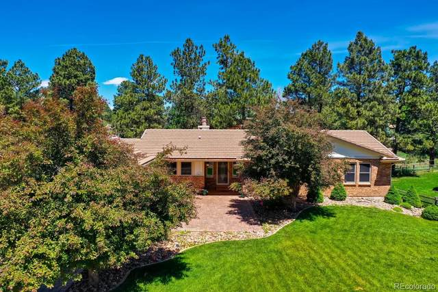 8453 Lightening View Drive, Parker, CO 80134 (#9950324) :: My Home Team