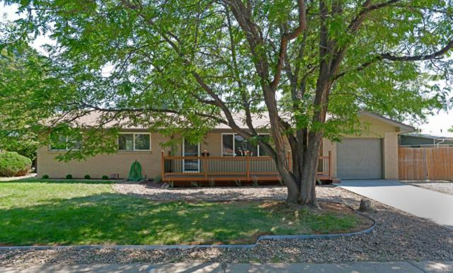 482 W Caley Avenue, Littleton, CO 80120 (#9950876) :: The HomeSmiths Team - Keller Williams