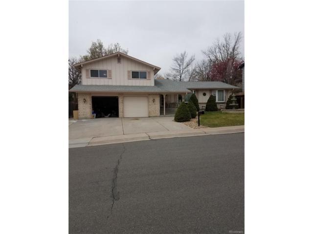 873 S Lee Street, Lakewood, CO 80226 (MLS #9952053) :: 8z Real Estate