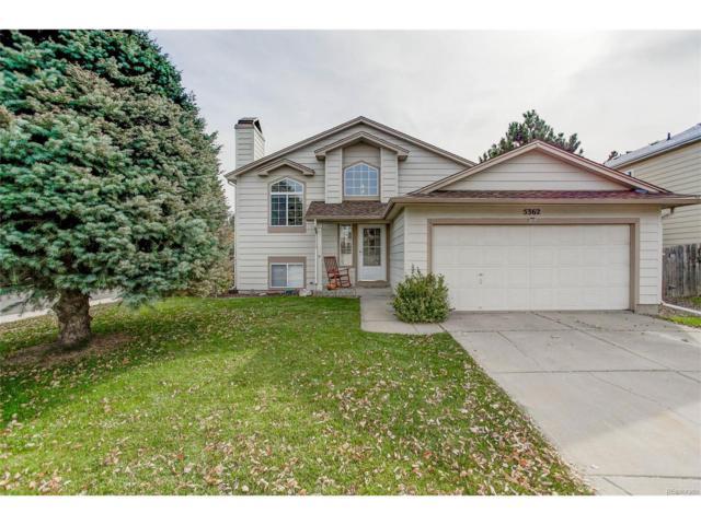 5362 E Sandpiper Avenue, Castle Rock, CO 80104 (#9953382) :: The Peak Properties Group
