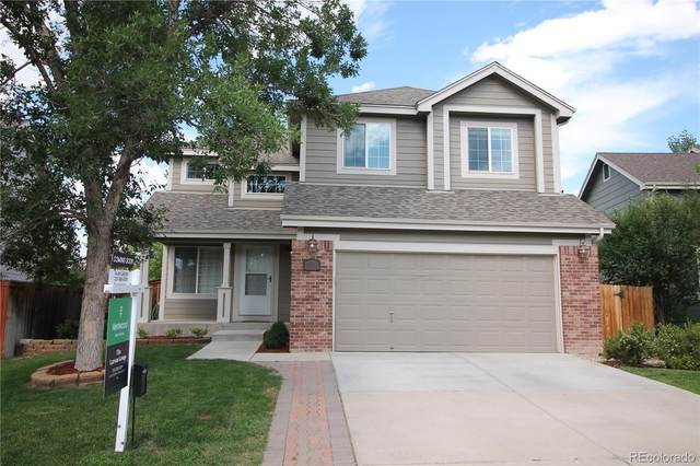 8906 Copeland Street, Littleton, CO 80126 (#9953700) :: The DeGrood Team