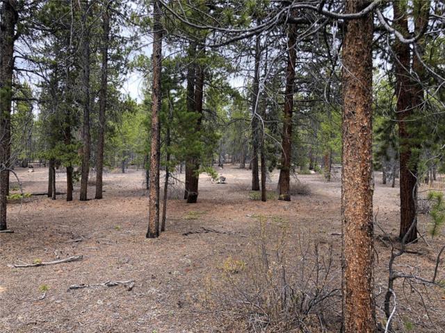880 Peak View Drive, Leadville, CO 80461 (#9953791) :: Compass Colorado Realty