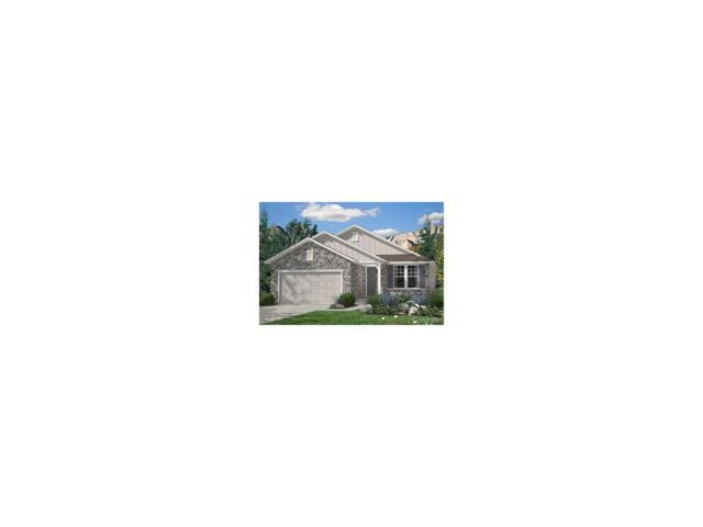 15941 Saint Paul Street, Thornton, CO 80602 (MLS #9954165) :: 8z Real Estate
