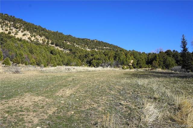 1085 Pinyon Street, Meeker, CO 81641 (#9958323) :: Re/Max Structure