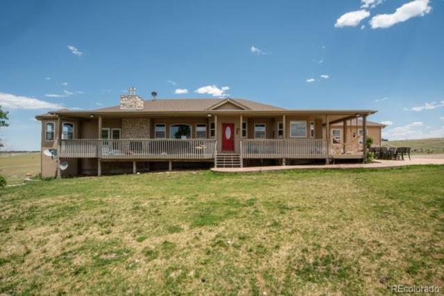 10585 Gillian Road, Franktown, CO 80116 (MLS #9960140) :: 8z Real Estate