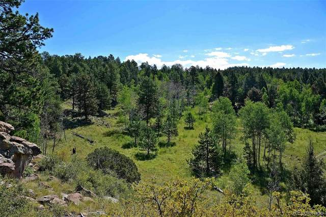 000 County Road 1, Cripple Creek, CO 80813 (#9963323) :: The Gilbert Group