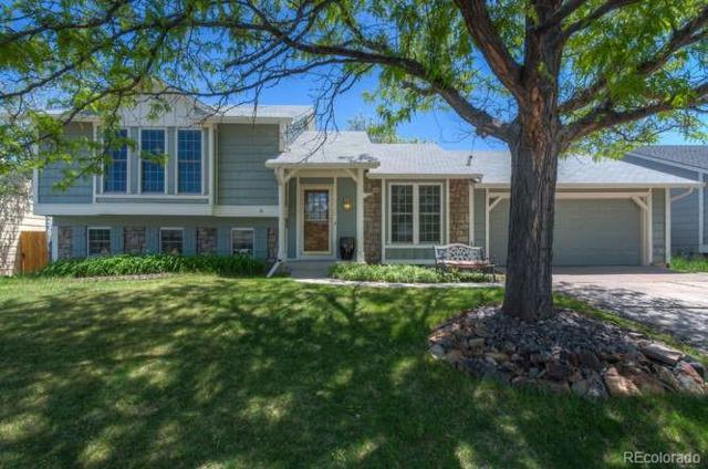 6004 S Perth Street, Centennial, CO 80015 (#9964529) :: Sellstate Realty Pros