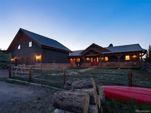 23060 Lynx Basin Lane, Oak Creek, CO 80467 (#9965292) :: Wisdom Real Estate