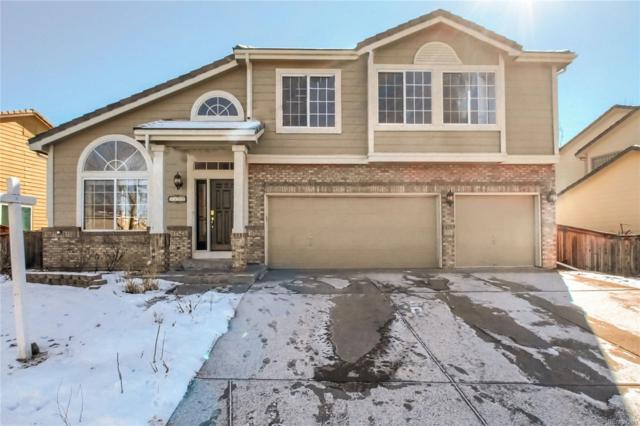 3455 White Oak Lane, Highlands Ranch, CO 80129 (#9967711) :: The DeGrood Team