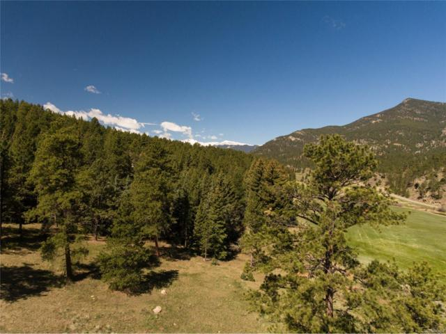 101 Fox Hollow Road, Evergreen, CO 80439 (#9968125) :: The DeGrood Team