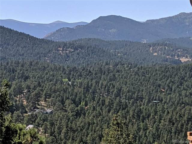 15600 S Pitkin Lane, Pine, CO 80470 (#9969746) :: HomeSmart