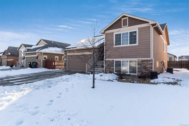 2841 Avocado Avenue, Greeley, CO 80631 (#9969795) :: Harling Real Estate