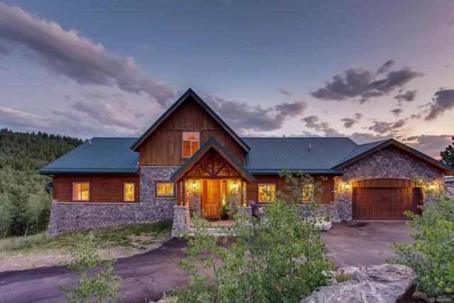 479 Dakota Ridge Road, Idaho Springs, CO 80452 (#9969994) :: Structure CO Group