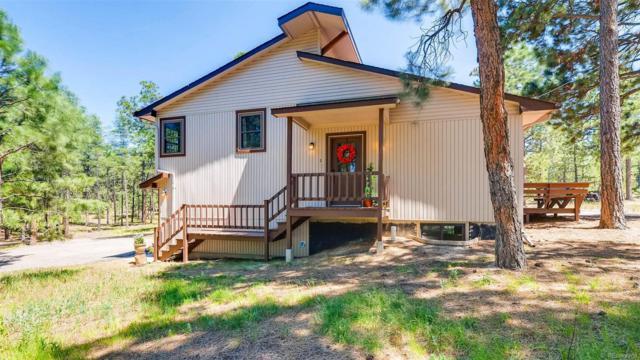 385 Buckskin Way, Monument, CO 80132 (#9970526) :: The Griffith Home Team