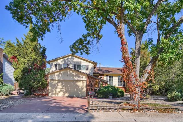 4650 Whimsical Drive, Colorado Springs, CO 80917 (MLS #9971213) :: 8z Real Estate
