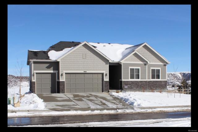 3850 Mighty Oak Street, Castle Rock, CO 80104 (#9973305) :: The Heyl Group at Keller Williams