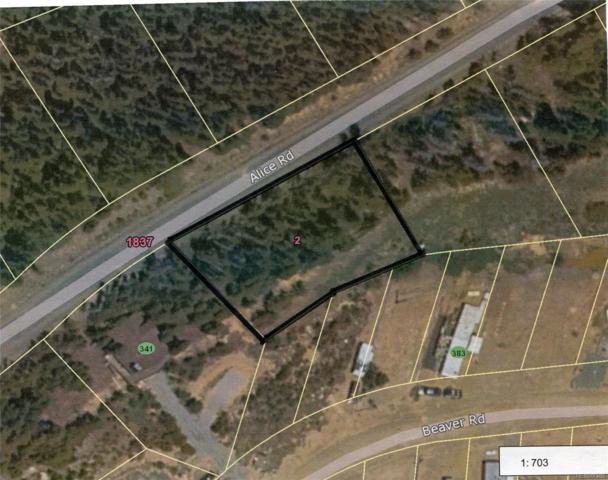 Lot 660 Alice Road, Idaho Springs, CO 80452 (#9977494) :: The Heyl Group at Keller Williams