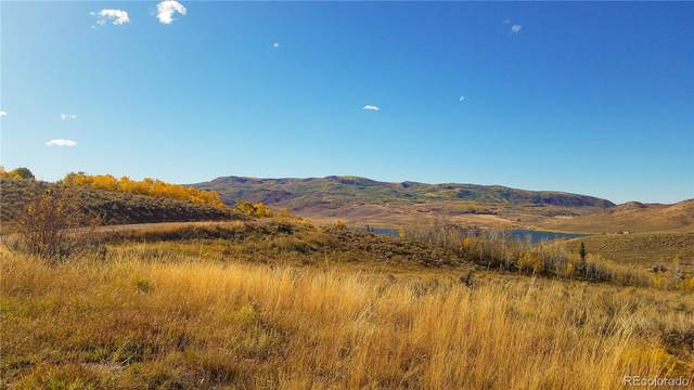 31555 Navajo Trail, Oak Creek, CO 80467 (#9977501) :: Portenga Properties - LIV Sotheby's International Realty