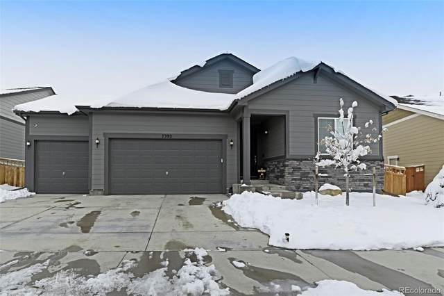 7392 Greenwater Circle, Castle Rock, CO 80108 (MLS #9981519) :: 8z Real Estate