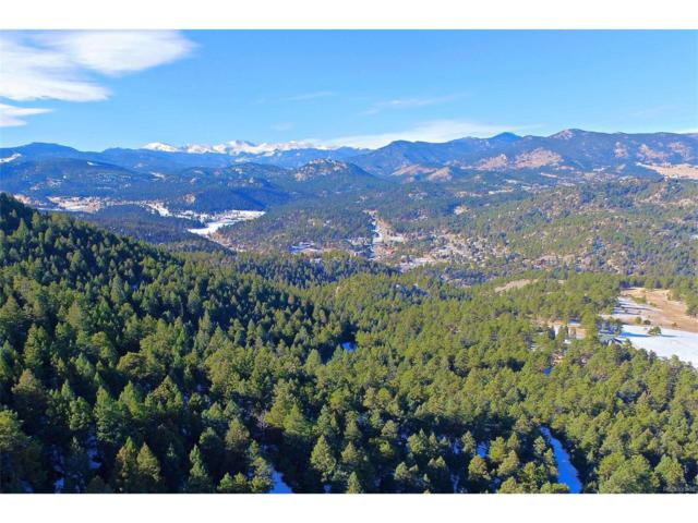 4380 Hilltop Road, Evergreen, CO 80439 (#9983716) :: Thrive Real Estate Group