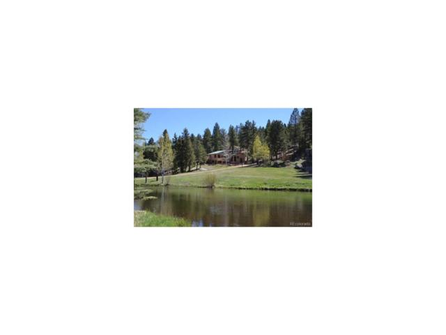 2540 County 782 Road, Woodland Park, CO 80863 (MLS #9983761) :: 8z Real Estate